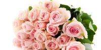 b_300_200_16777215_00_images_istnpra_pink-roses-hd-wallpapers13.jpg - Нотариальная палата